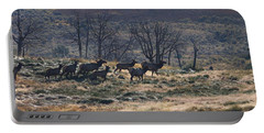 Follow The Leader - Elk In Rut Portable Battery Charger