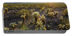 Sea Of Cholla Portable Battery Charger