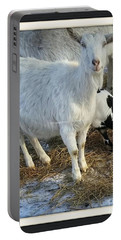 For The Love Of Wholesome Milk Portable Battery Charger