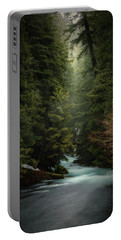 Portable Battery Charger featuring the photograph Forest Enchantment by Cat Connor