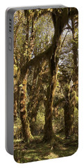 Forest Setting In Hoh Rain Forest Portable Battery Charger