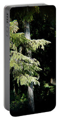 Forest Sunlight - 1 Portable Battery Charger