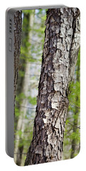 Portable Battery Charger featuring the photograph Forest Trees by Christina Rollo