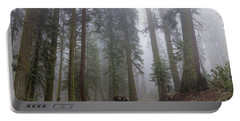 Portable Battery Charger featuring the photograph Forest Walking Path by Peggy Hughes