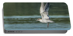 Forster's Tern 092017-5021-1cr Portable Battery Charger