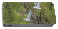 Forster's Tern 5706-092217-1cr Portable Battery Charger