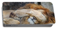 Fort Worth Zoo Sleepy Lion Portable Battery Charger