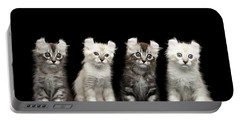 Four American Curl Kittens With Twisted Ears Isolated Black Background Portable Battery Charger