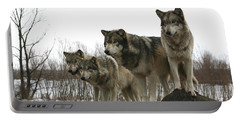 Portable Battery Charger featuring the photograph Four Pack by Shari Jardina