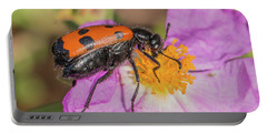 Portable Battery Charger featuring the photograph Four-spotted Blister Beetle - Mylabris Quadripunctata by Jivko Nakev