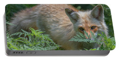 Fox In The Ferns Portable Battery Charger