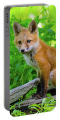Fox Kit - 1 Portable Battery Charger