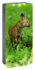 Fox Kit - 2 Portable Battery Charger