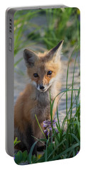 Fox Kit Portable Battery Charger