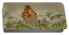 Fox Sparrow In Winter Portable Battery Charger