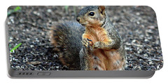 Fox Squirrel Breakfast Portable Battery Charger by Sheila Brown