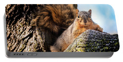 Fox Squirrel Watching Me Portable Battery Charger