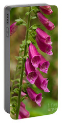 Portable Battery Charger featuring the photograph Foxglove by Sean Griffin