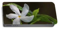 Frangipani Curves Portable Battery Charger