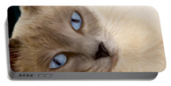 Frankie Blue Eyes Portable Battery Charger