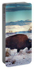 Free To Roam Portable Battery Charger