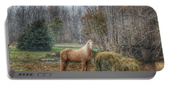 1016 - Frenchline Road Carmel Mare I Portable Battery Charger