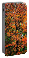 Portable Battery Charger featuring the photograph Fresco Autumn Diptych Left by Ellen Barron O'Reilly
