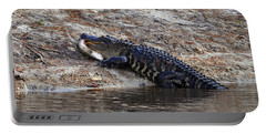 Portable Battery Charger featuring the photograph Fresh Fish by Al Powell Photography USA