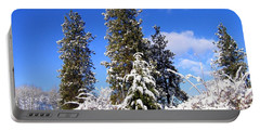 Portable Battery Charger featuring the photograph Fresh Winter Solitude by Will Borden