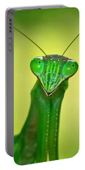 Friendly Mantis Portable Battery Charger