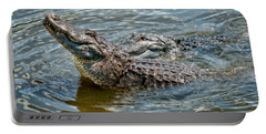 Portable Battery Charger featuring the photograph Frisky In Florida by Christopher Holmes
