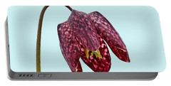 Fritillaria Meleagris - Blue Background Portable Battery Charger