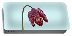 Fritillaria Meleagris Blue Background Portable Battery Charger