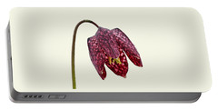 Fritillaria Meleagris Cream Background Portable Battery Charger