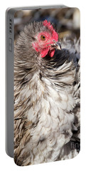 Frizzled Cochin Hen Portable Battery Charger