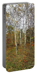 Frontenac State Park Birch Trees Portable Battery Charger