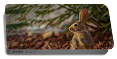 Portable Battery Charger featuring the photograph Frontyard Bunny by Dan McManus
