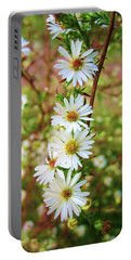 Frost Aster Portable Battery Charger