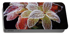 Frost Cluster Portable Battery Charger