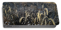 Frosted Foxtail Grasses In Glacial Park Portable Battery Charger
