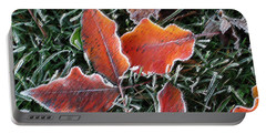 Portable Battery Charger featuring the photograph Frosted Leaves by Shari Jardina