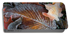 Portable Battery Charger featuring the photograph Frosted Painted Leaves by Shari Jardina