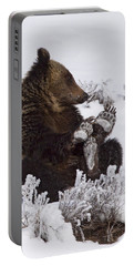 Frosty Feet-signed Portable Battery Charger by J L Woody Wooden