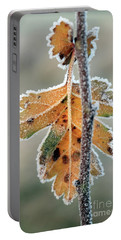 Frosty Leaf Portable Battery Charger