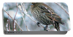 Winter's Perch Portable Battery Charger
