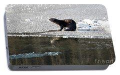 Frosty River Otter  Portable Battery Charger by Mike Dawson