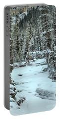 Frozen Jasper Portrait Portable Battery Charger