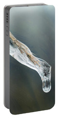 Frozen Pampas Grass Plume  Portable Battery Charger