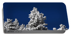 Frozen Tranquility Ute Pass Cos Co Portable Battery Charger