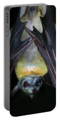 Portable Battery Charger featuring the photograph Fruit Bat by Anthony Jones